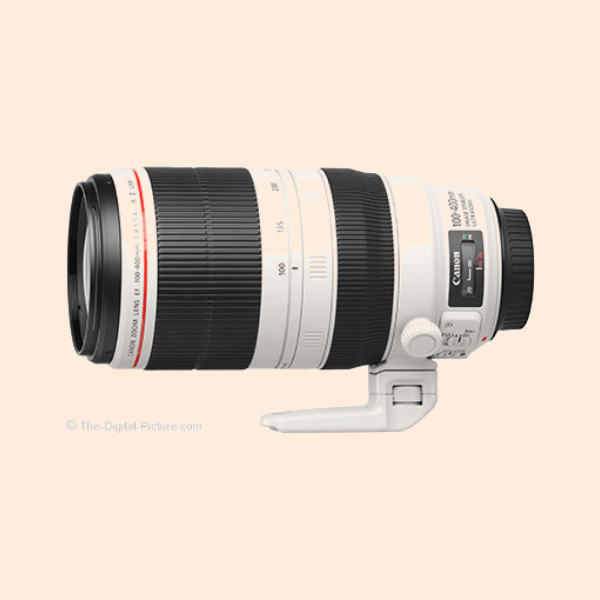 Canon 100-400 L Series IS