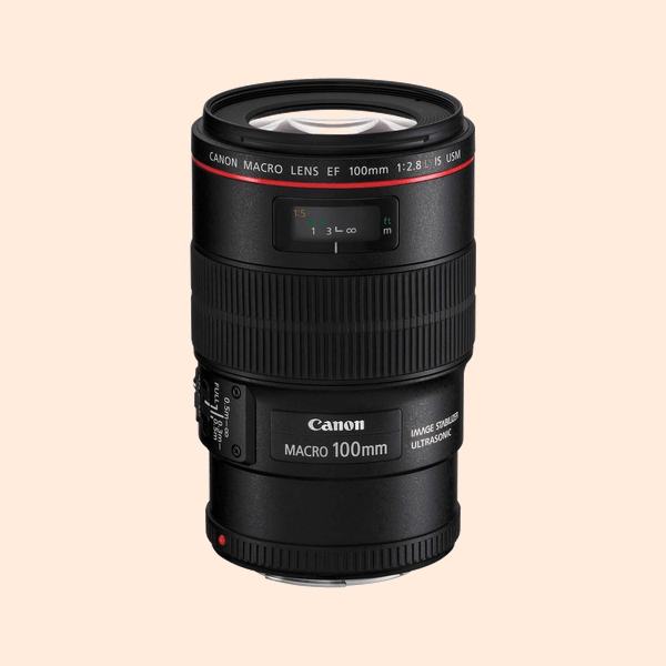 Canon 100 mm Macro F2.8 IS