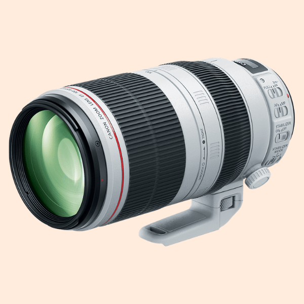 Canon 100-400 F4.5 - 5.6 IS -II