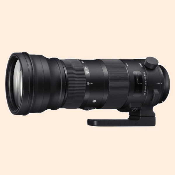 Sigma 150-600mm F/5-6.3 DG OS HSM(C) for Canon mount